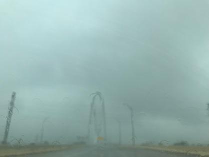 Dallas DT Rain